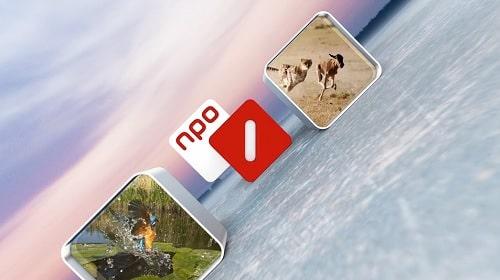 NPO1 - Ispida Wildlife Productions