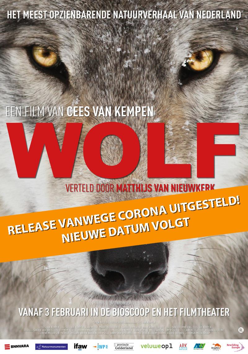 IWP Wildlife - De wolf is terug